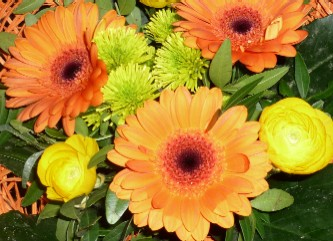 © Parfum-Duft-Blog.de / Parfüme die nach Blumen duften